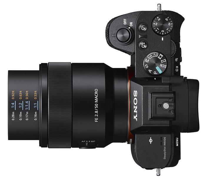 Sony FE 50mm f2.8 Macro - Dàn lens 50mm hùng hậu nhất!   50mm Vietnam Official Site