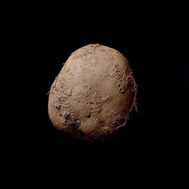 Bạn muốn chế tạo máy ảnh ? 1 củ khoai tây là đủ ! | 50mm Vietnam Official Site