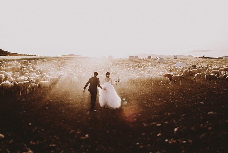 30 cái tên khuấy đảo giới ảnh cưới năm 2016 | 50mm Vietnam Official Site