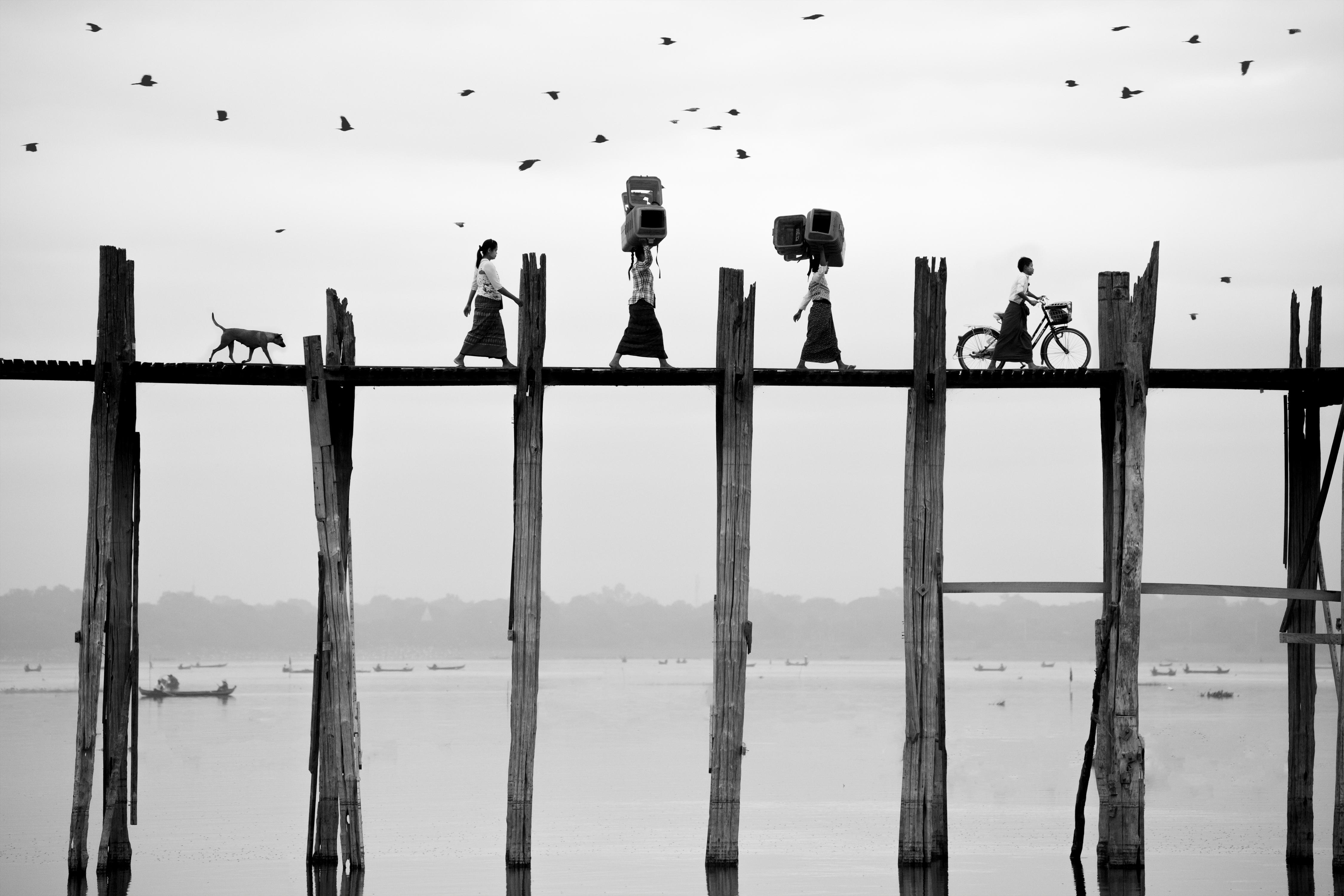 Sony World Photography Awards 2018 xướng tên người thắng cuộc | 50mm Vietnam