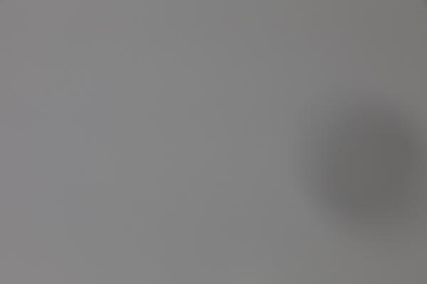 Công chúa ruồi ngủ trong ống kính 70-200mm: Chuyện thật như đùa? | 50mm Vietnam